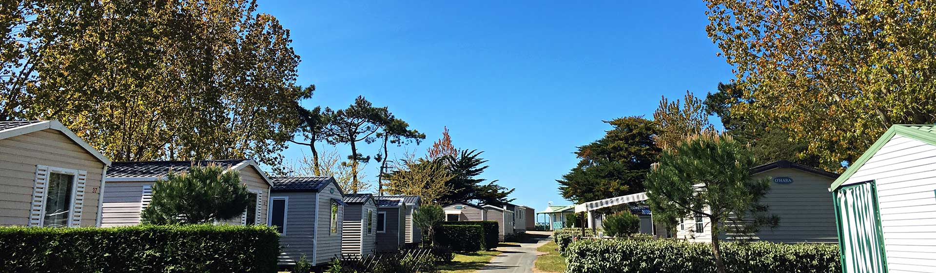 camping les Violettes mer vendee